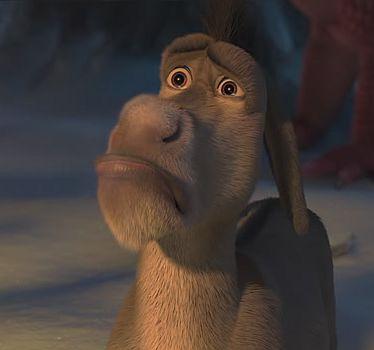 Liberal Donkey
